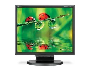 LCD175M NEC