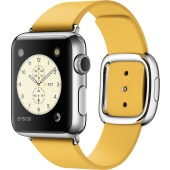 Apple Watch (38 mm) Paslanmaz Çelik Kasa ve Modern Tokalı Marigold Kayış