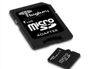 MicroSD 2GB Bigboy