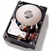 IBM Express IBM 2TB 7.2K NL SATA 3.5 HS HDD