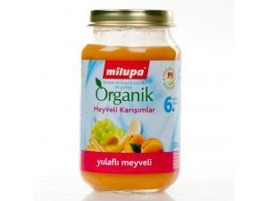Kavanoz Maması Organik Yulaflı Meyveli 200 gr Milupa