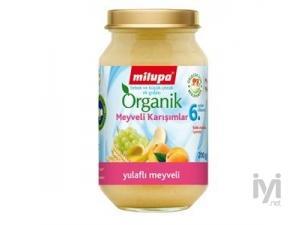 Kavanoz Maması Organik Yulaflı Üzüm Kayısı MIL-13569 Milupa