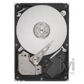 Seagate 250GB 16MB 7200rpm SATA3 ST250DM000