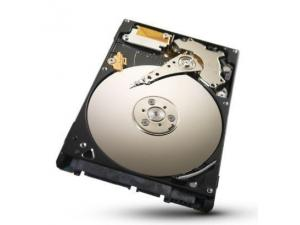 Momentus 2.5 320 GB 5400.6 Sata 3GB-s Seagate