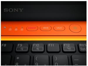 Vaio VPC-CA3S1ED  Sony